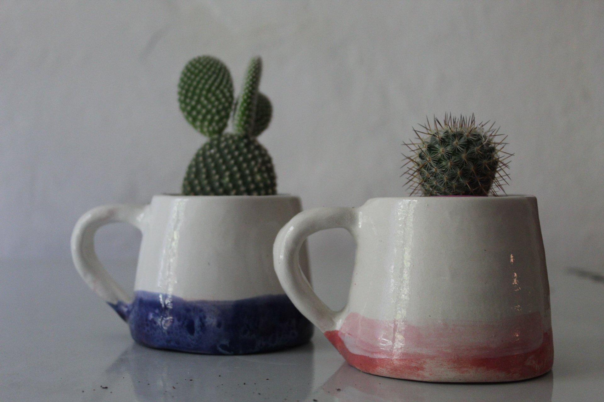 tazze vaso 11