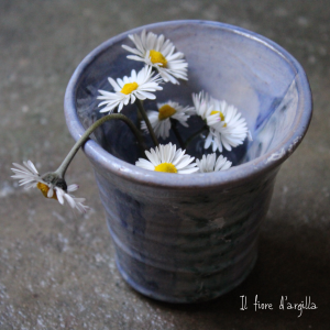 fiori spontanei margherite