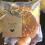 Arance essiccate: idee per un Natale al profumo d'arancia